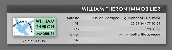 William THERON Immobilier